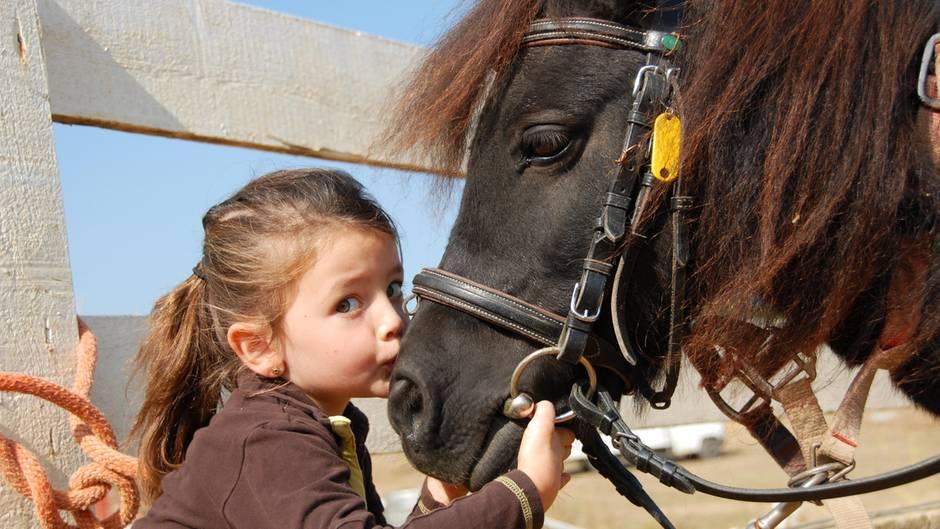 Ein Mädchen küsst ein Pony auf die Nüstern
