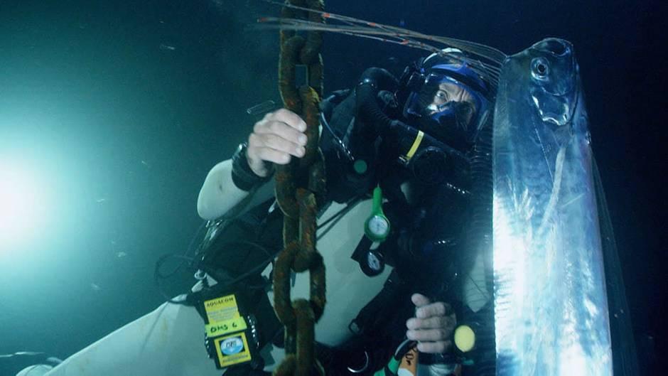 Seltene Sichtung : Taucher spürt geheimnisvollen Tiefsee-Fisch auf