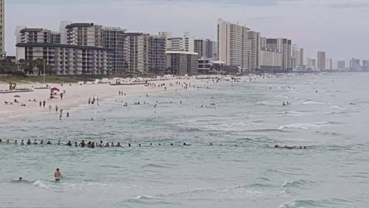 An einem Strand in Florida bilden Menschen eine Kette, um Ertrinkende zu retten