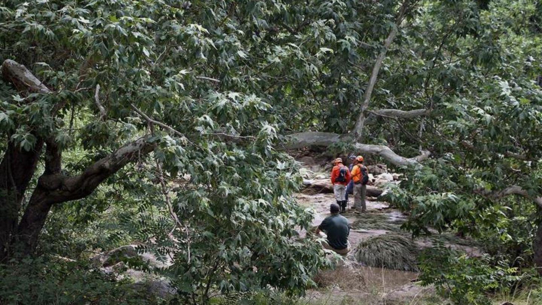Rettungskräfte suchen bei Payson, Arizona in einem Waldstück nach vermissten Schwimmern