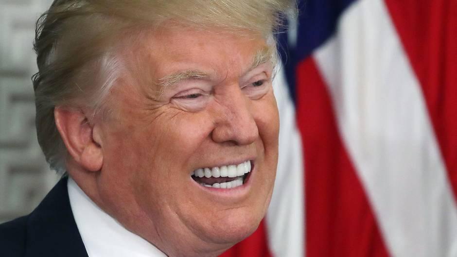 Donald Trump sechs Monate