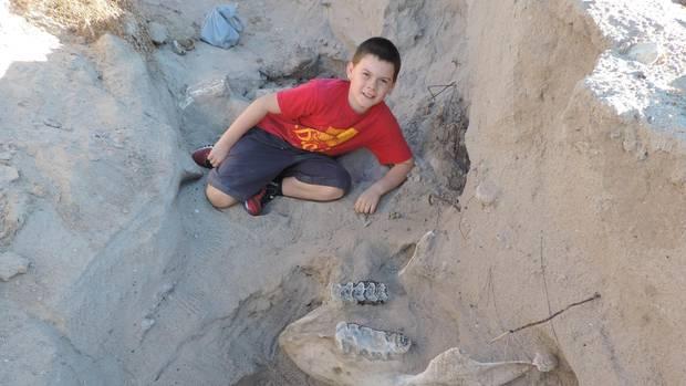 Jude Sparks neben seinem Fund: dem fossilen Schädel eines Stegomastodon