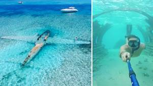 Bahamas: Versunkenes Drogenflugzeug als Touristenmagnet