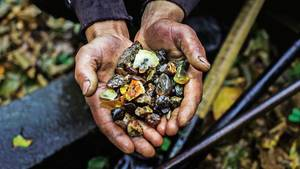 Illegaler Bernsteinabbau: Das Gold und der Dreck