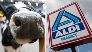 Ein Zusammenschnitt aus einer Kuh und einem Schild des Discounters Aldi Nord