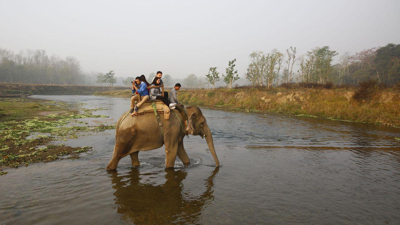 Ein Elefant reitet mit seinem Führer und Touristen durch einen Fluss in Asien