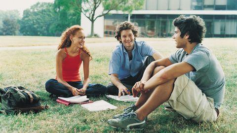 Eine Studentin und zwei Studenten sitzen auf der Wiese