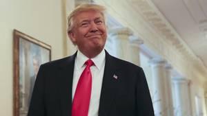 Seit Donald Trump im Weißen Haus ist, mussten zahlreiche Mitglieder seines Stabs das Feld räumen