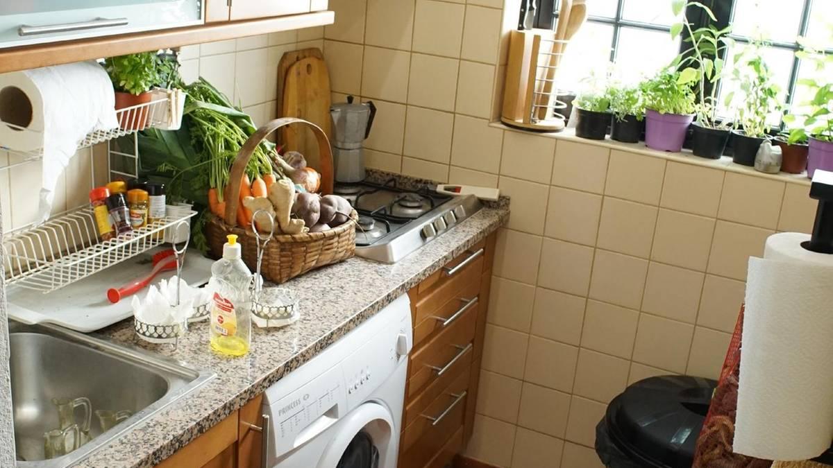 Sommerhaus der Stars: Nix mit Luxus: - so marode ist die Villa ...