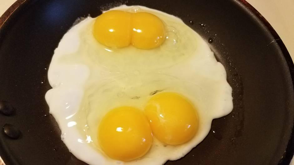 Fragen, die sich jeder stellt: Warum hat ein Ei zwei Dotter - und ist es noch genießbar?