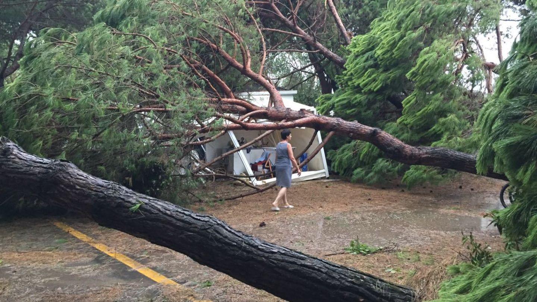 Unwetter in Italien: Eine Frau geht auf einem Campingplatz in Cavallino bei Venedig an umgestürzten Bäumen vorbei