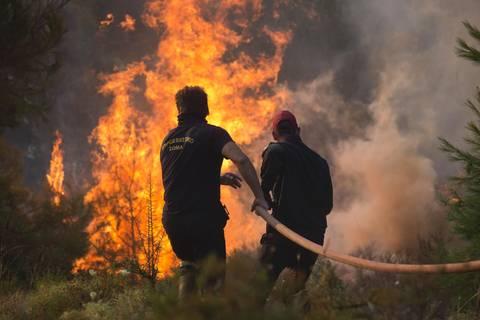 News: Schwere Waldbrände: Griechenland bittet EU um Hilfe