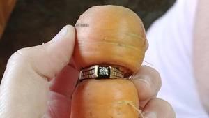 Mary Grams fand ihren Verlobungsring an einer Möhre im Garten