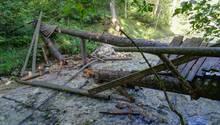 Beim Zusammenbruch einer Fußgängerbrücke über einem Bach in Oberbayern sind elf Kinder und Jugendliche leicht verletzt worden.