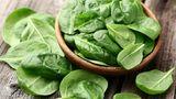 Kein Gemüse ist mehr mit Pestiziden belastet als Spinat. In den USA waren einige Proben sogar mit toxischem Insektengift kontaminiert. Der Einsatz ist in der EU verboten.