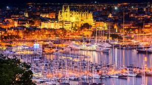 Yachten im Hafen von Palma de Mallorca mit der angestrahlten Kathedrale