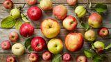 Äpfel enthalten rund 13 Gramm natürlichen Zucker, der ideale Energiebooster also.