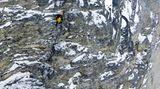 GeschwindigkeitsrekordEiger-Nordwand 2011  Die bekannteste Route durch die Eiger-Nordwand oberhalb von Grindelwald ist der Weg der Erstbegeher, die Heckmair-Route. Diese durchklettert Dani Arnold im April 2011 im Alleingang in 2 Stunden und 28 Minuten. Sein Rekord wurde jedoch im November 2015 vom Ueli Steck, der im April 2017 am Nuptse im Himalaya tödlich verunglückte, um 6 Minuten unterboten.
