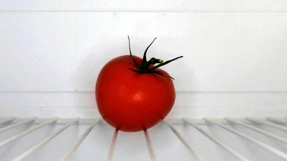Tomate im Kühlschrank