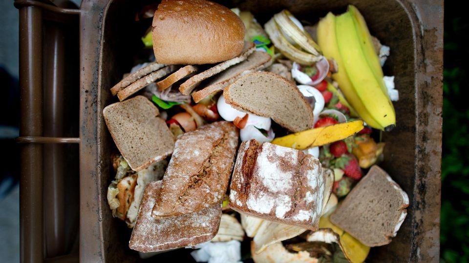 Lebensmittel im Mülleimer: Tonnen von Essen weggeworfen: So verschwenderisch sind die Deutschen