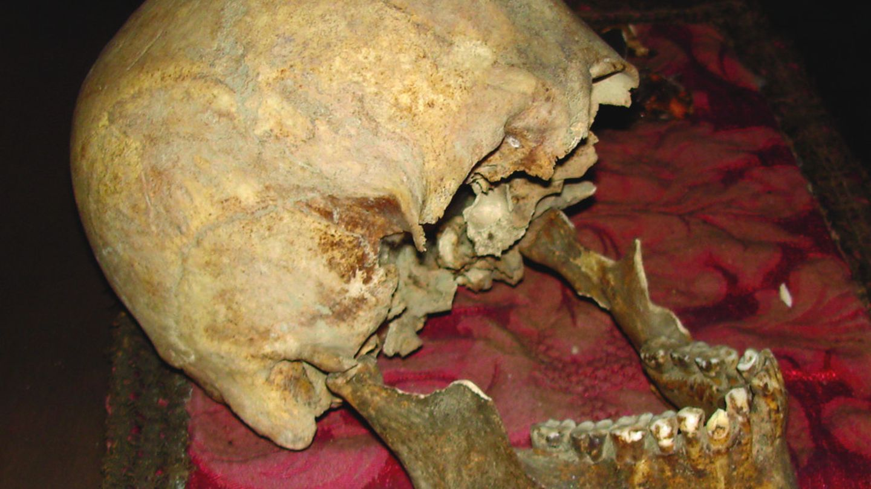 Auf einem roten Tuch liegt ein alter Schädel. Der Unterkiefer ist aufgeklappt, dem Schädel fehlen die Augenhöhlen