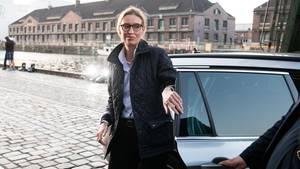 Jung, weiblich, eloquent: AfD-Spitzenkandidatin Alice Weidel