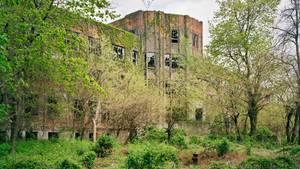 Von Efeu überwucherte Fassaden und eingeschlagene Scheiben: Der Trakt, in dem ab 1943 die an Tuberkulose Erkrankten untergebracht werden sollten, ging schon damals nicht mehr in Betrieb.