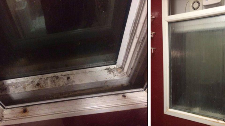 Diese Fotos von seinem Fenster postete der Student