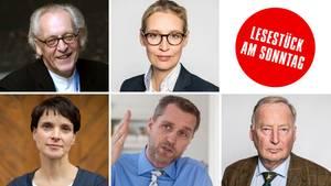 Bundestagswahl 2017: Die vielen Gesichter der AfD
