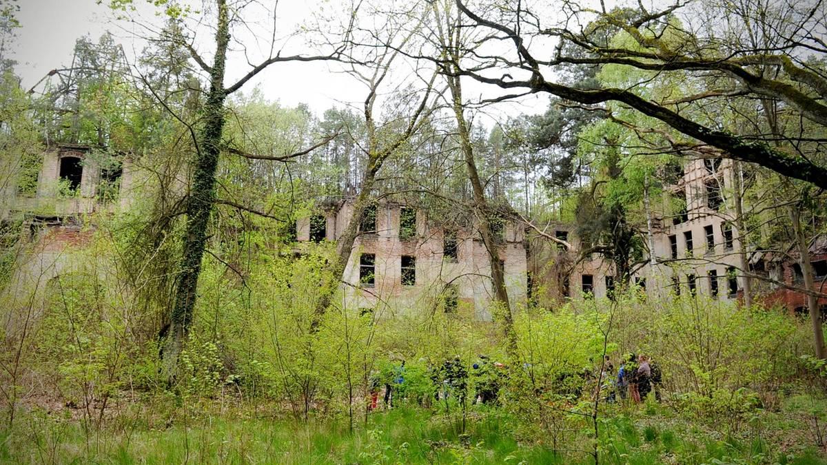 Beelitz in Brandenburg: Hier wurden einst Lungenkranke behandelt - jetzt zerfällt Europas größte Heilanstalt