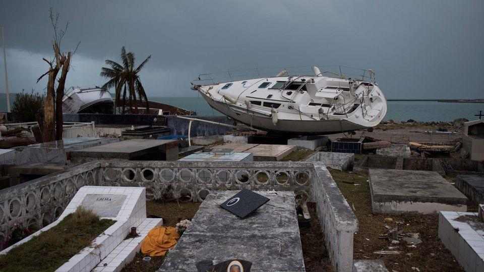 Hurrikan Irma hat in der Karibik große Schäden angerichtet