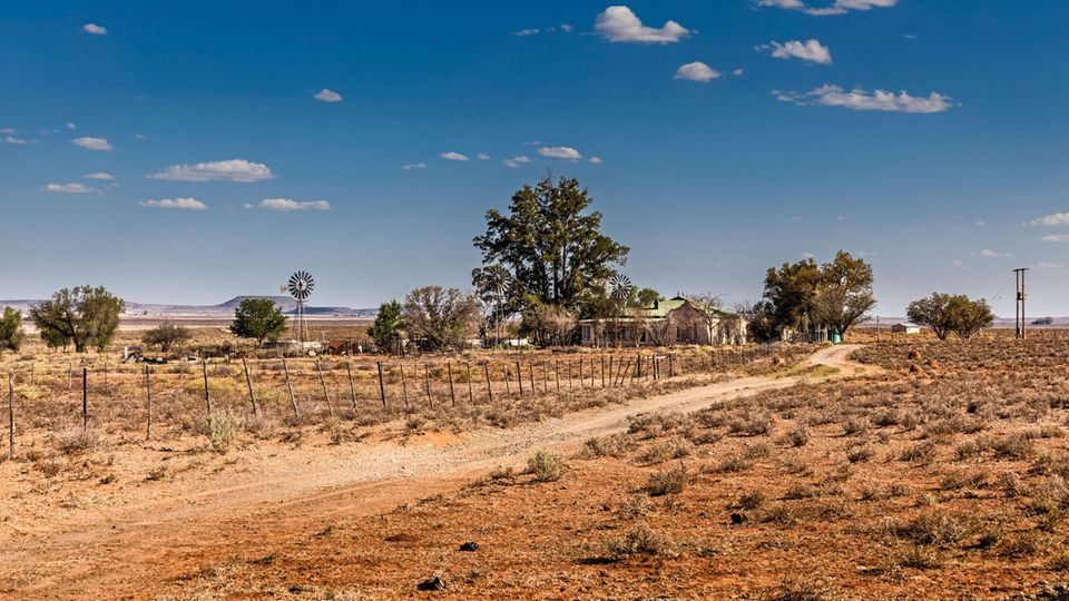 Farmhaus, Windrad, drum herum viel Nichts: ein Hof in der Provinz Eastern Cape