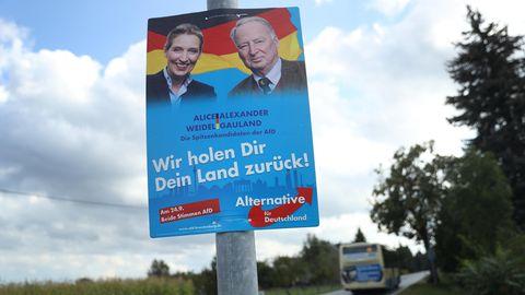 AfD Wahlkampfplakat