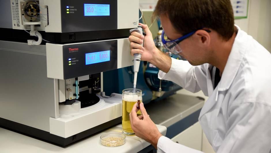 Der Erlanger Wissenschaftler Thomas Sommer entnimmt eine Bierprobe, um den Hordenin-Gehalt zu messen