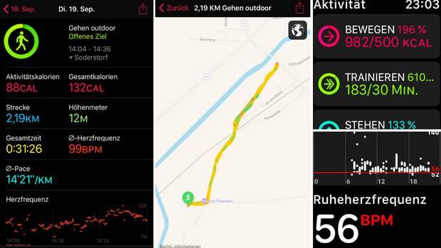 Die Apple Watch sammelt im Workout (hier: Gehen Outdoor) viele Daten, etwa die Zahl der Schritte, die zurückgelegte Distanz und die überwundenen Höhenmeter. Zudem werden die Ruheherzfrequenz und die durchschnittliche Herzfrequenz angezeigt. Auf einer Karte kann man auf Wunsch die Route nachvollziehen.