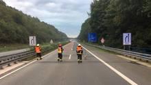 nachrichten deutschland - schwan auf autobahn 46