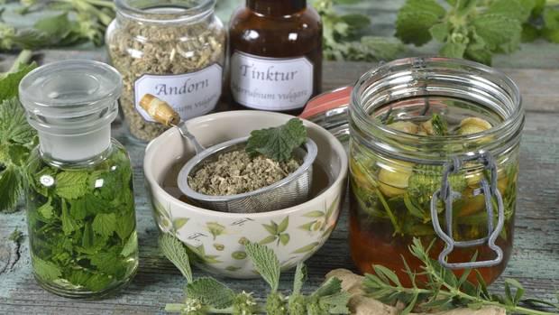 Andorn gibt es in sämtlichen Variationen: als Tee, Tinktur oder Honig. Er hilft bei Magenproblemen oder Erkältung