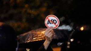 wahl 2017 proteste afd