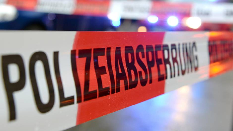 Waschbär taumelt im Rausch - Polizei als Tierfreund und Helfer