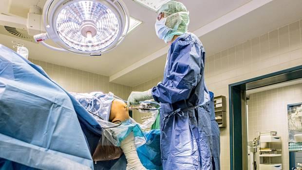 Entnahme: Für eine Transplantation stanzt der Orthopäde gesunden Knorpel aus dem Knie der Patientin