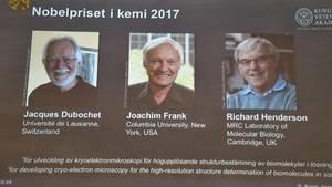 Die diesjährigen Preisträger des Chemie-Nobelpreises