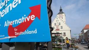 Die Alternative für Deutschland (AfD) wird primär von Wählern gewählt, die eher modernisierungsskeptisch sind