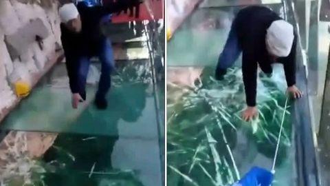 """Panik auf dem """"Skywalk"""": Glasbrücke splittert unter Füßen von Touristen"""