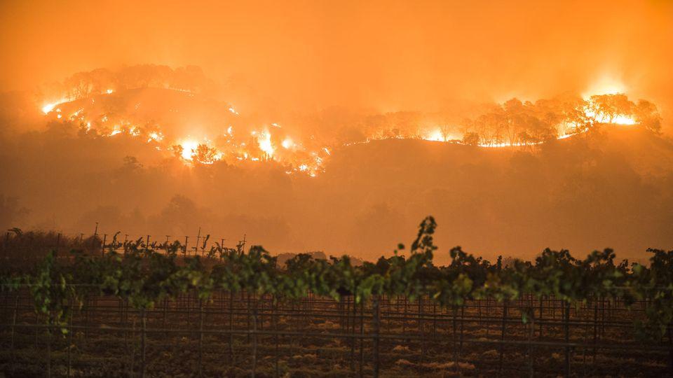 Mindestens 21 Tote bei Bränden in Kalifornien