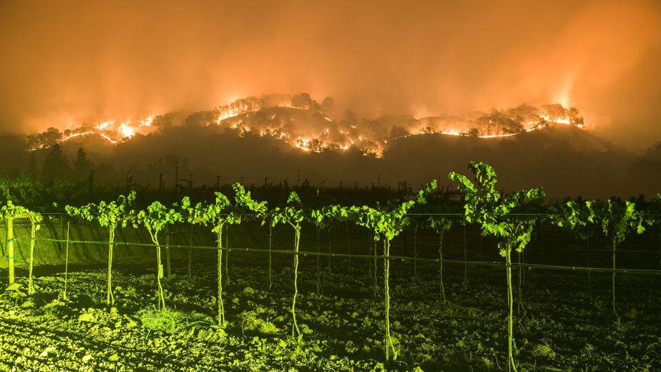 Mindestens 21 Tote bei den Bränden in Kalifornien
