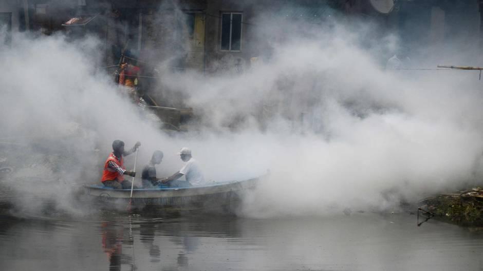 Pest-Fakten: Der Schwarze Tod kehrt zurück