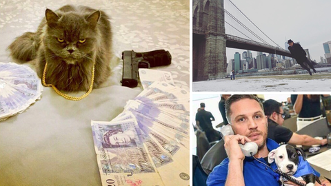 Drei verrückt Bilder von Instagram