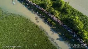 Tausende Rohingya auf der Flucht aus Myanmar: Die Luftaufnahme entstand nahe der Grenzstation Anjuman Para in Bangladesch