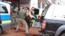 nachrichten deutschland - wildschweine in heide