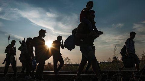 Sommer 2015: Menschen an der Grenze zwischen Ungarn und Serbien